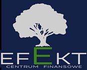 logo EFEKT