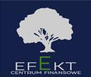 efekt_logo